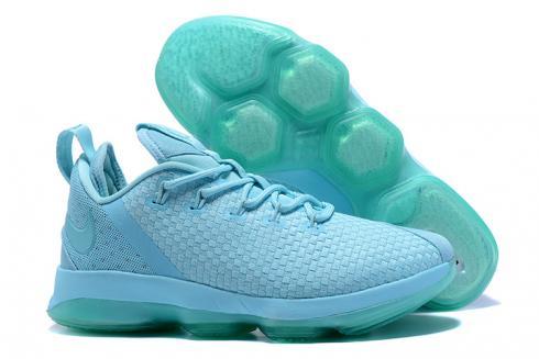 Nike Zoom Lebron XIV 14 Low Men